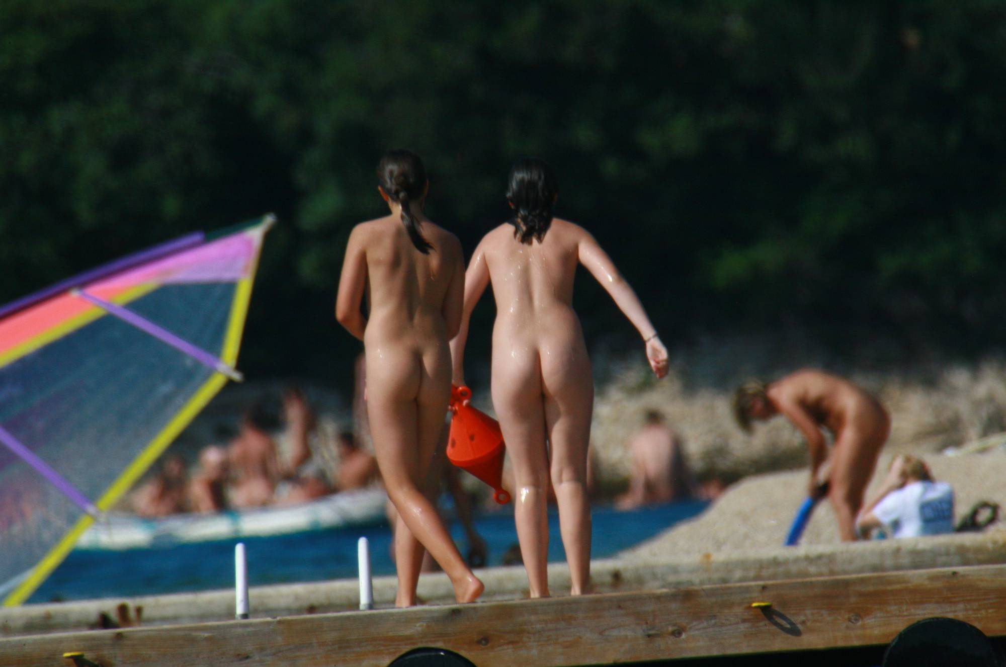 Nudist Pics Wooden Island Freedom - 1